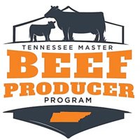 Cocke County Master Beef Producer Course