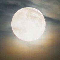 Harvest Moon Night Hike