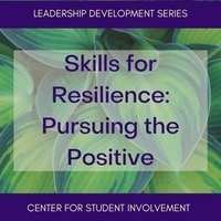 Skills for Resilience: Pursuing the Positive