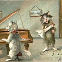 First Open Mic: Virtually through the Cat in the Cream