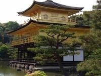 Study Abroad Q&A: Asia Programs