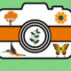 The UT Dallas Virtual Bioblitz will be held from Oct. 5 - 11. Use the iNaturalist app to identify local flora and fauna!