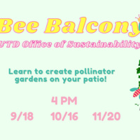 Learn to cultivate your own pollinator garden at the Bee Balcony Workshop!