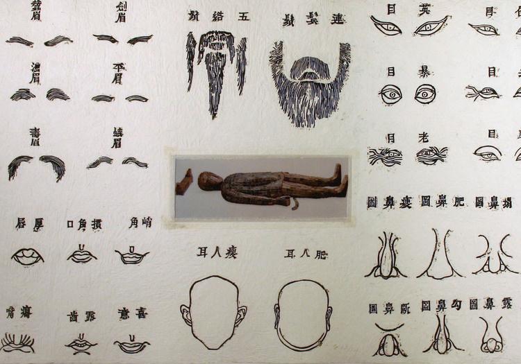Public Tour: 'Human Forms'