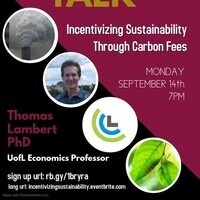 Incentivizing Sustainability Through Carbon Fees