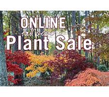 Online Public Fall Plant Sale