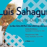Virtual Artist Talk: Luis Sahagun