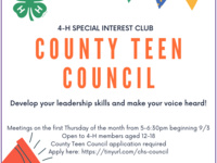 Charleston County Teen Council