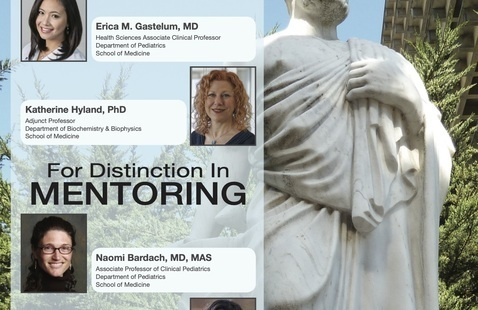 Distinguished Faculty Award for Distinction in Teaching & Distinction in Mentoring