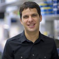 Salvatore Oddo, Ph.D.