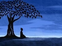 Meditation: Learning to Slow the Mind