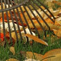 Fall Garden Wrap Up - Smith Center, KS