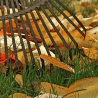 Fall Garden Wrap Up - Belleville, KS