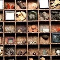 Specimen drawer from Hans Sloane's collection, The British Museum