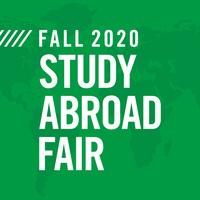 Study Abroad Alumni Q&A: Germany and Ireland