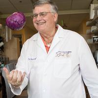 Prof. David Williams