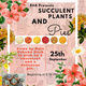 RHA Succulant Plants and Pie