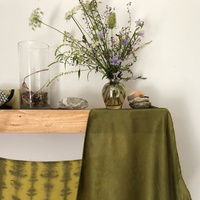 Virtual Presentation: Fabric Dyeing with Botanicals