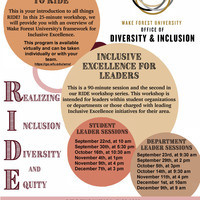 Inclusive Excellence for Departmental Leaders: Realizing Inclusion, Diversity, and Equity