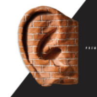 Deaf Republic Cover