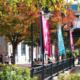 Fall 2020 Degree Program Classes Resume