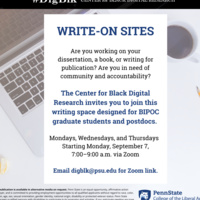 The Center for Black Digital Research Write On Sites