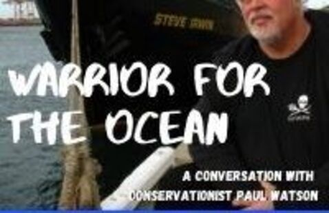 Warrior for the Oceans: A Conversation with Conservationist Paul Watson