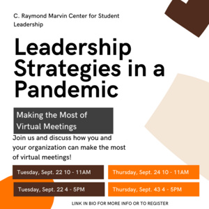Leadership Strategies in a Pandemic - Making the Most of Virtual Meetings