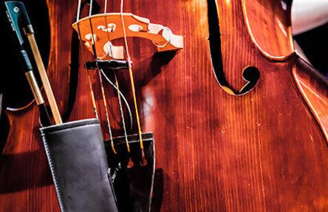 Diego Matallana, Classical Bass