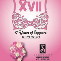 XVII: 17 Years of Suppor