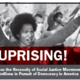 Uprising!: A Lecture on the Necessity of Social Justice Movements and Rebellions in Pursuit of Democracy in America