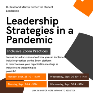 Leadership Strategies in a Pandemic - Inclusive Zoom Practices