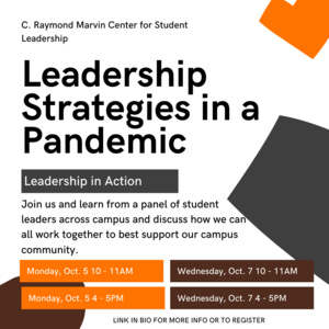 Leadership Strategies in a Pandemic - Leadership in Action