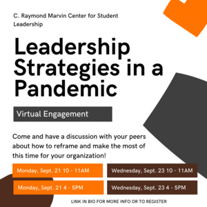 Leadership Strategies in a Pandemic - Virtual Engagement