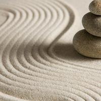Integrative Medicine Student Interest Group: Integrative Approaches to Stress