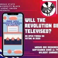 Will the Revolution Be Televised? An Open Forum on Voting in 2020