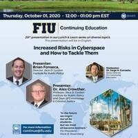 """""""Increased Risks in Cyberspace and How to Tackle Them"""" (In English)"""