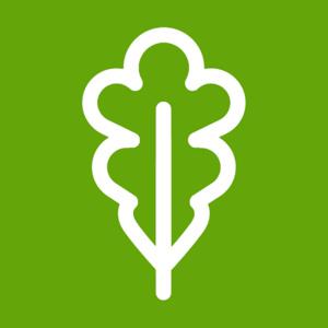 Songbird Migration (Sustainability Passport)