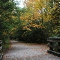 Guided Hike Through History