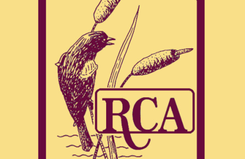 Rice Creek Associates Logo - red-winged blackbird and cattails