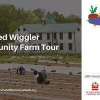 Red Wiggler Community Farm Tour
