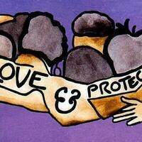 Love & Protect