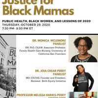 Justice for Black Mamas: Public Health, Black Women, and the Lessons of 2020
