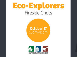 Eco-Explorers: Fireside Chats (Ages 4+)