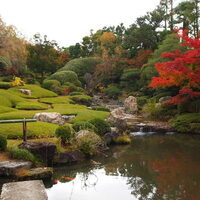 Zen Garden. Kyoto. Photo by Venerable Tenzin Priyadarshi