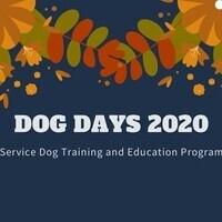Dog Days 2020