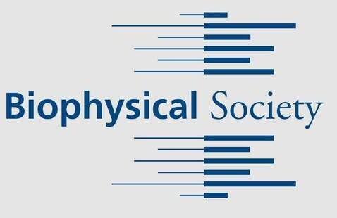 Biophysical Approaches to Therapies Development