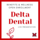 Delta Dental of Ohio Overview