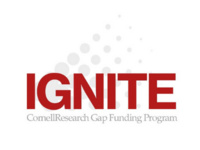 IGNITE:Research Acceleration - Info Session 1
