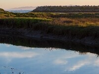 NRS Fall Seminar Series I Carpinteria Salt Marsh Reserve